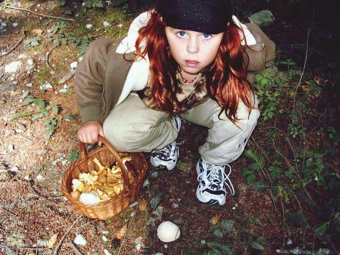 Nature Mushroom Hunting