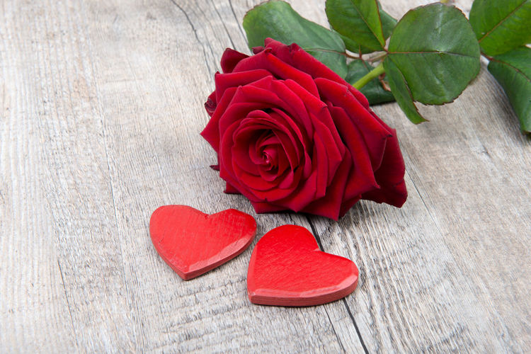 Beauty In Nature Close-up Day Flower Flower Head Fragility Freshness Heart Shape Indoors  Leaf Love Nature No People Petal Red Romance Rose - Flower Rose Petals Table Valentine's Day - Holiday Wood - Material