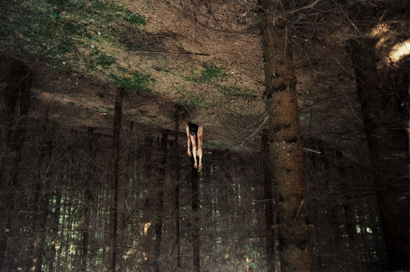 Upside Down Image Of Woman Lying In Woodland