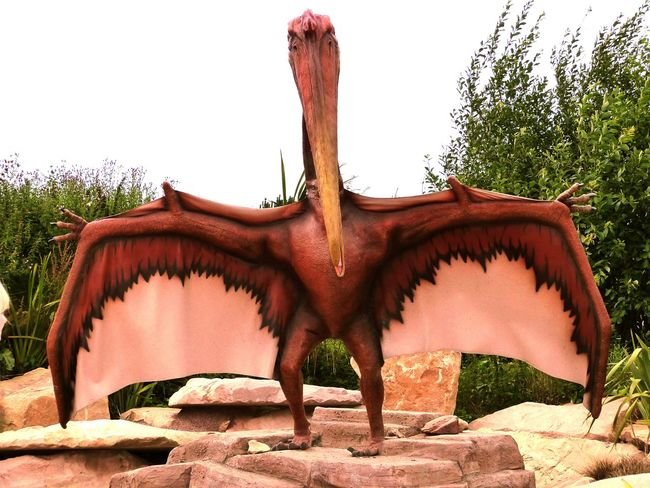 I saw a big ol' dinosaur Dinosaur Wings Scary Zoo Edinburgh Edinburgh Zoo