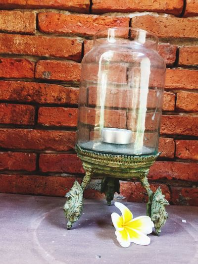 Wall - Building Feature Brick Wall No People Close-up Flower Indoors  Freshness Architecture Oil Lamp Day