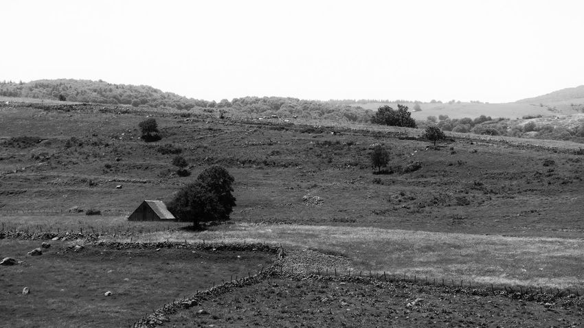 aubrac Landscape Rural Rural Scene Aubrac Aveyron Nature Nature_collection Nature Photography Rocky Blackandwhite Black And White Black & White Bnw Bnw Sky Countryside Scenics Tranquil Scene Tranquility Non-urban Scene
