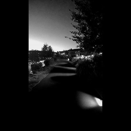 Walk along the Deschutes river trail Nightout Twilight Lowlights Getoutside PNWonderland Photooftheday Thepnwlife Westcoast_exposures Me Centraloregon_igers Exploregon Thatoregonlife Oregonexplored Instagood Follow Love New ShotOnMyLumia  Lumia Bendlife Vistbend Inbend Bnw Bnw_society bnw_captures blackandwhite blackandwhitephotography bnw_city