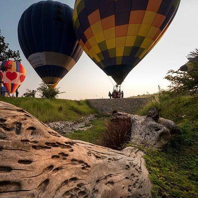 ระหว่างรอบอลลูนขึ้น Lumixgx8 Balloonfiesta  Ballon Singhaparkchiangrai Thailand Thetrippacker Thaitraveling Reviewthailand Reviewchiangrai Loves_siam Chianghaijudpai Singhapark
