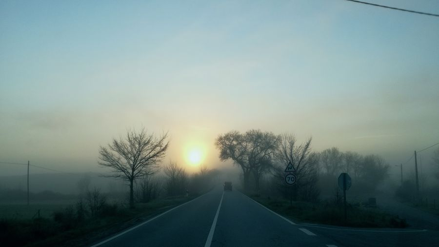Road The Way Forward Nature Day No People Madrugada Portugal Foggy Morning Beauty In Nature Nascer Do Sol