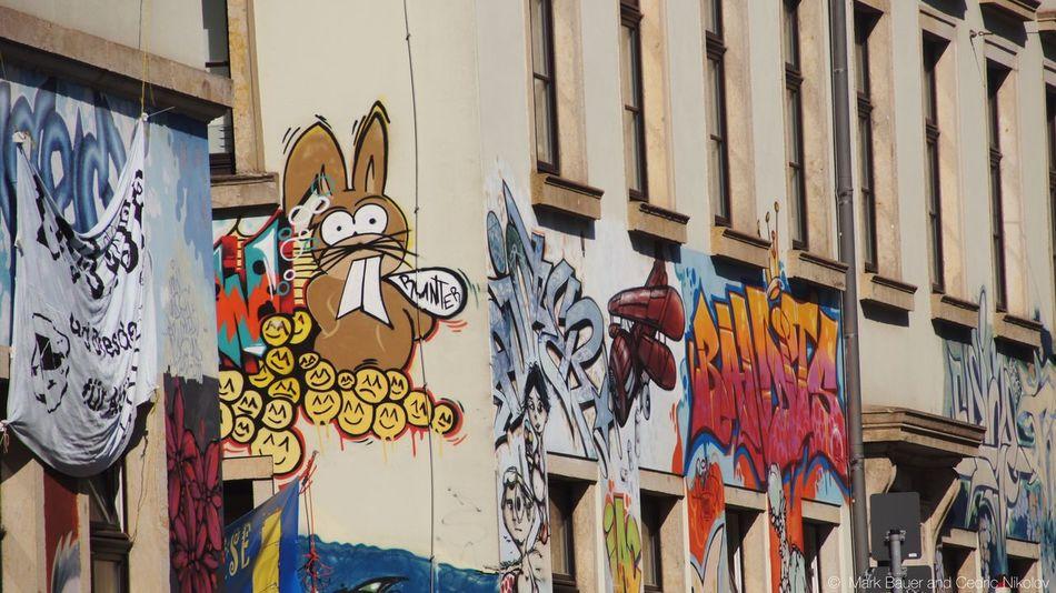 EEA3 EEA3 - Dresden Grafitti Streetphotography Wall Art Grafiti Dresden Colorful Bunny  Taking Photos