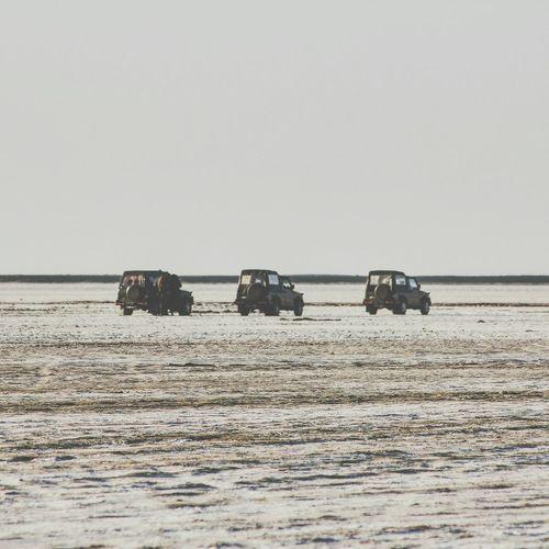 Jeeps parked on desert against sky