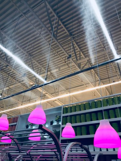Loft Ceiling Indoors  Low Angle View Pink Color Illuminated Multi Colored Built Structure No People Architecture Day Close-up