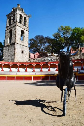 Plaza de toros Jorge el Ranchero Aguilar Outdoors Day Sky