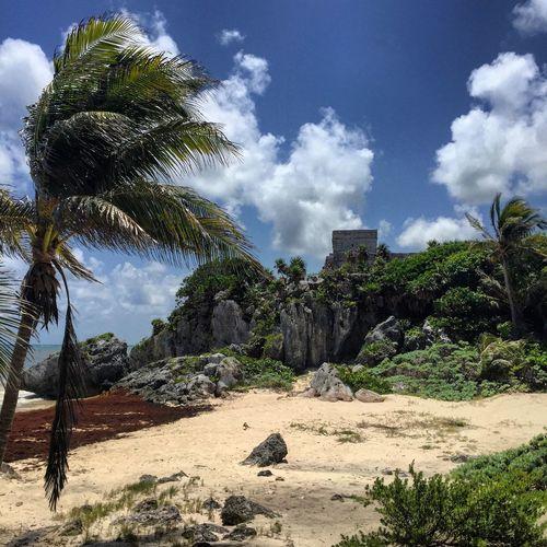 Beach, ruins Showcase: November Photanaka Beach Ruins Tulum Travel Mexico