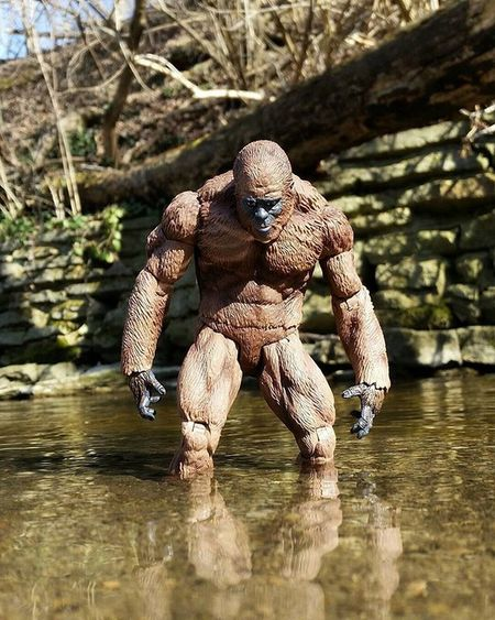 Do you believe? Ohiotoykick Bigfoot Ata_dreadnoughts Sasquatch Toyoutsiders _tyton_ Geekunion Toysaremydrug Wheretoysdwell Tcb_theeclipse2016 Toyelites Justanothertoygroup Toyslagram_toyartistry_dual_feature Toyunion Starwars Starwars Toyplanet Toyartistry Toptoyphotos Rebeltoysclub Jj_toys Toycrewbuddies Toygroup_alliance Toyartistry_elite Toyphotography epictoyart toyboners cincinnati ohio