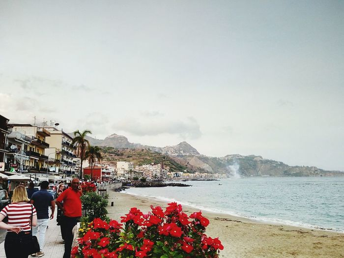 Giardini Naxos Flower Beach Mountain Vacations Day Sea City Tree One Person People Outdoors Giardini Messina