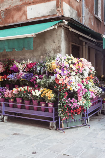Architecture Beauty In Nature Building Exterior Built Structure Bunch Of Flowers Choice Day Flower Flower Arrangement Flower Head Flower Pot Flowering Plant Fragility Freshness Growth Multi Colored Nature No People Outdoors Plant Potted Plant Retail  Retail Display Variation Venice Vulnerability