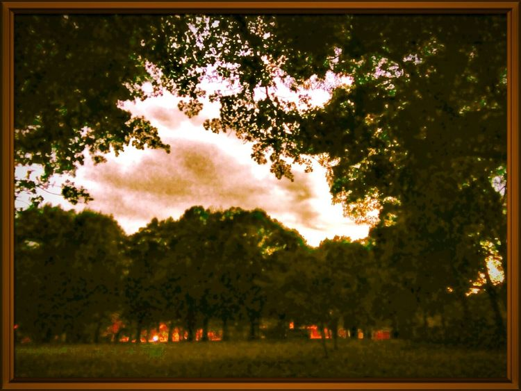 Beauty In Nature Photo Editing Hdrimage HDRphoto Hdr Collections Hdrzone Hdrfusion HdrmaniaSky Art Cloud_collection  Hdr_gallery Hdr_pics Trees And Sky Sunsetphotographs Parkscapes Showcase June
