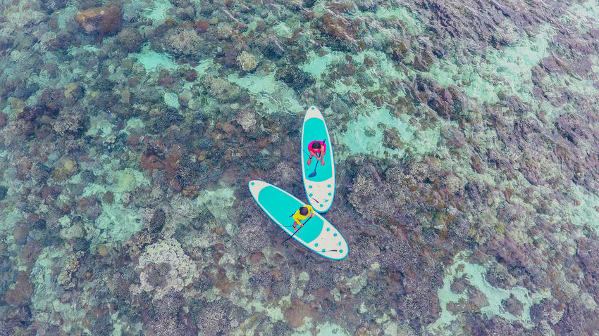 Bangka Island Bird's Eye View Day Drone  Dronephotography EyeEm Best Edits High Angle View Housereef Nature Outdoors Paddle Boarding Paddleboarding Relax Relaxing Flying High Islands Done That.