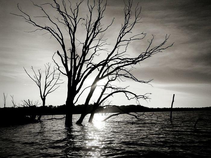 ♡ Beautiful lake!!♡ Gone Fishing Sunriseporn Shades Of Grey Light And Shadow TreePorn Protecting Where We Play