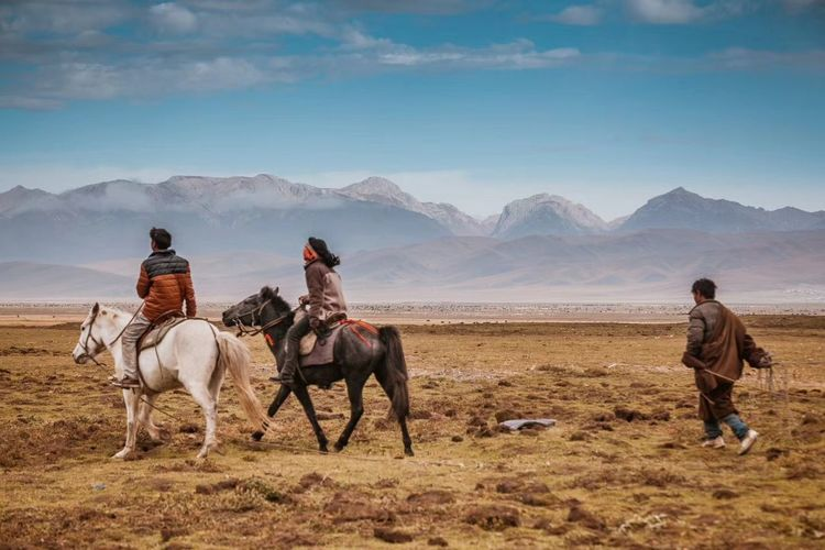 EyeEm Selects 若尔盖 Horse Adult People Riding Mountain Horseback Riding Rural Scene Domestic Animals Togetherness Transportation Agriculture Sky Adults Only Only Men Men Desert Sports Helmet Mammal Day Working Sichuan