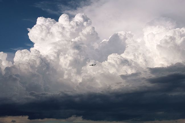 Cloud - Sky Sky Flying Mid-air Transportation Air Vehicle Beauty In Nature Nature Tranquil Scene Adventure Mode Of Transportation Animal Themes Scenics - Nature Animal