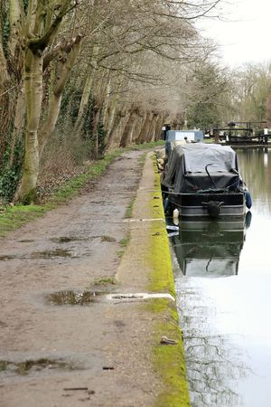 Calm Canal Day Moorings  Moss Mud Nature Navigation No People Outdoors River Scenics Surrey Countryside Towpath Tree Water Wey Navigation