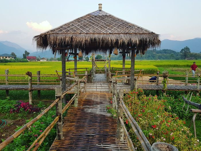 Mountain Agriculture Sky Hut Cage Farmland Terraced Field Fence Stilt House Rice Paddy Rice - Cereal Plant Thatched Roof