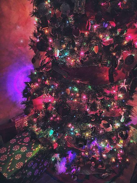 A symbol of wealth. Christmas Tree Christmas Decorations Holidays Seasonal Joy Spirit Ornament