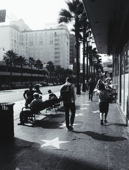 Hollywood Stars Busy Street