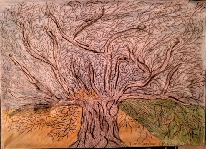 "Hello World, I tried something new with my drawing....I call it...""Tree in Sundown""...have seen it and draw it...enjoy... Check This Out Enjoying Life Eveningsun Originalpicture Individual Picture Nature Picturing Individuality Pivotal Ideas Shadow And Light Drawing Creativity Trees And Sky Flowers,Plants & Garden Art, Drawing, Creativity Onelook"
