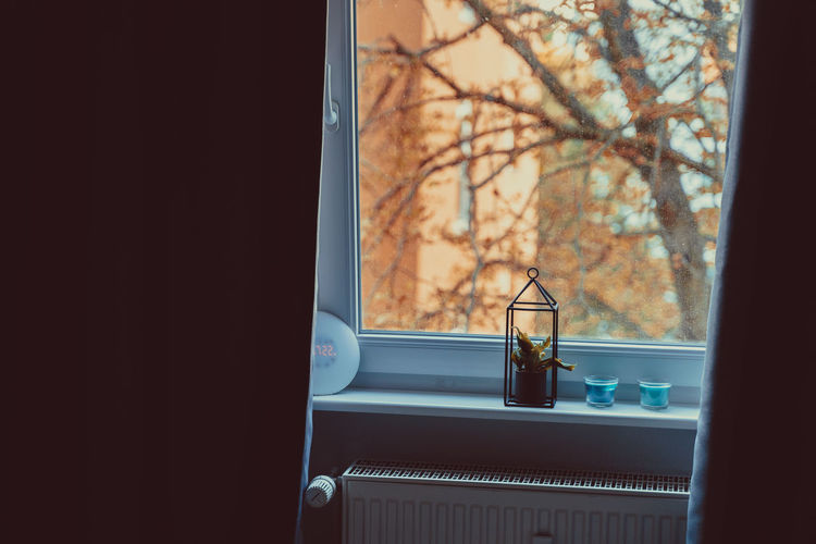 Intimate Bottle Container Day Electric Lamp Focus On Foreground Glass Glass - Material Household Equipment Indoors  Lighting Equipment Looking Through Window Nature No People Plant Still Life Table Transparent Tree Window Window Sill