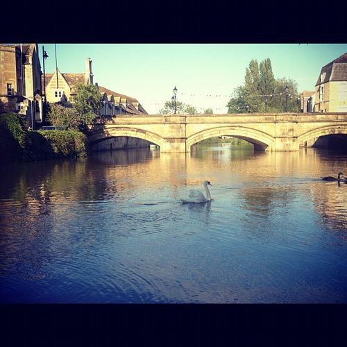 Stamford Water Sky Tranquility Outdoors River Beauty In Nature Built Structure Swan Bridge Stamford Uk Riverscape River Scene Landscapes With WhiteWall