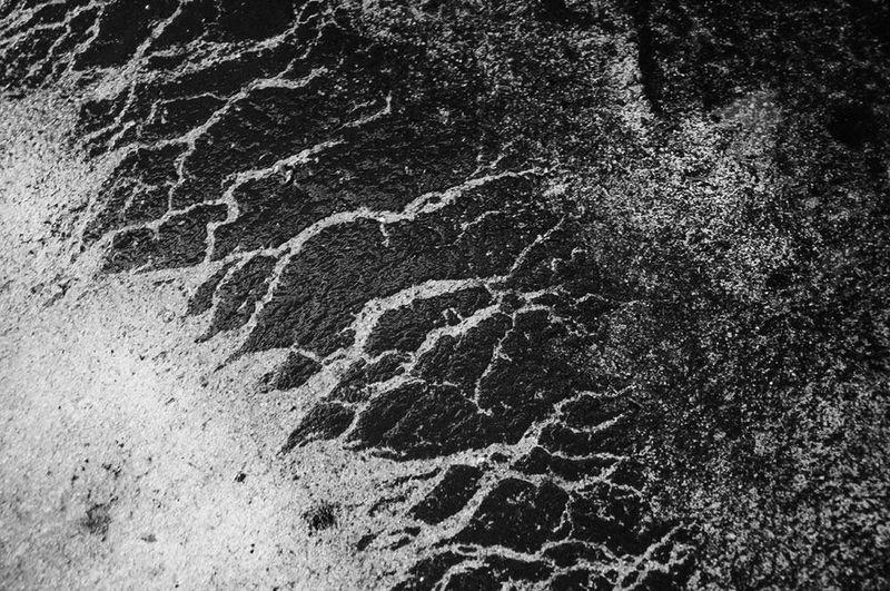 Pattern Pieces Nature's Diversities Art Abstract Abstract Nature Blackandwhite Blackandwhite Photography Black & White The Magic Mission Monochrome Photography Monochrome Welcome To Black