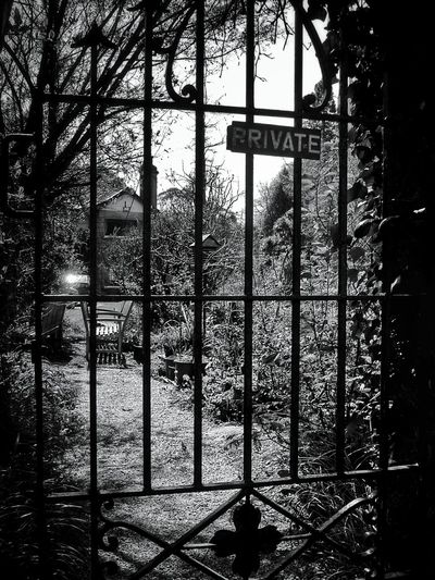 Private Taking Photos Cottages Cottageinthewoods MonochromePhotography Cottage Light And Shadows Blackandwhite Monochrome Monochrome _ Collection Blackandwhite Photography Nature Photography Black And White Black&white Landscape_lovers Landscape_Collection Landscape_photography Nature_collection Naturelovers Landscapes The Great Outdoors - 2016 EyeEm Awards Monochrome Photography Black & White Oldgate Gates