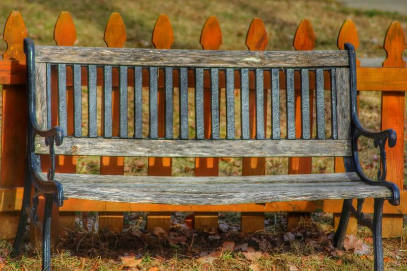 Bench And Fence
