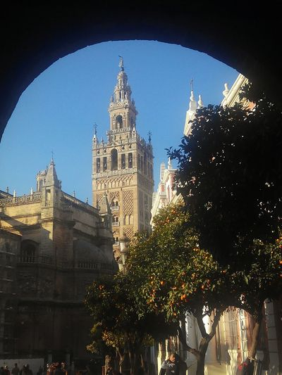 G I R A L D A Monumentos  Sevilla Spain Andalucía Giralda Travel Destinations Architecture Patio De Los Naranjos