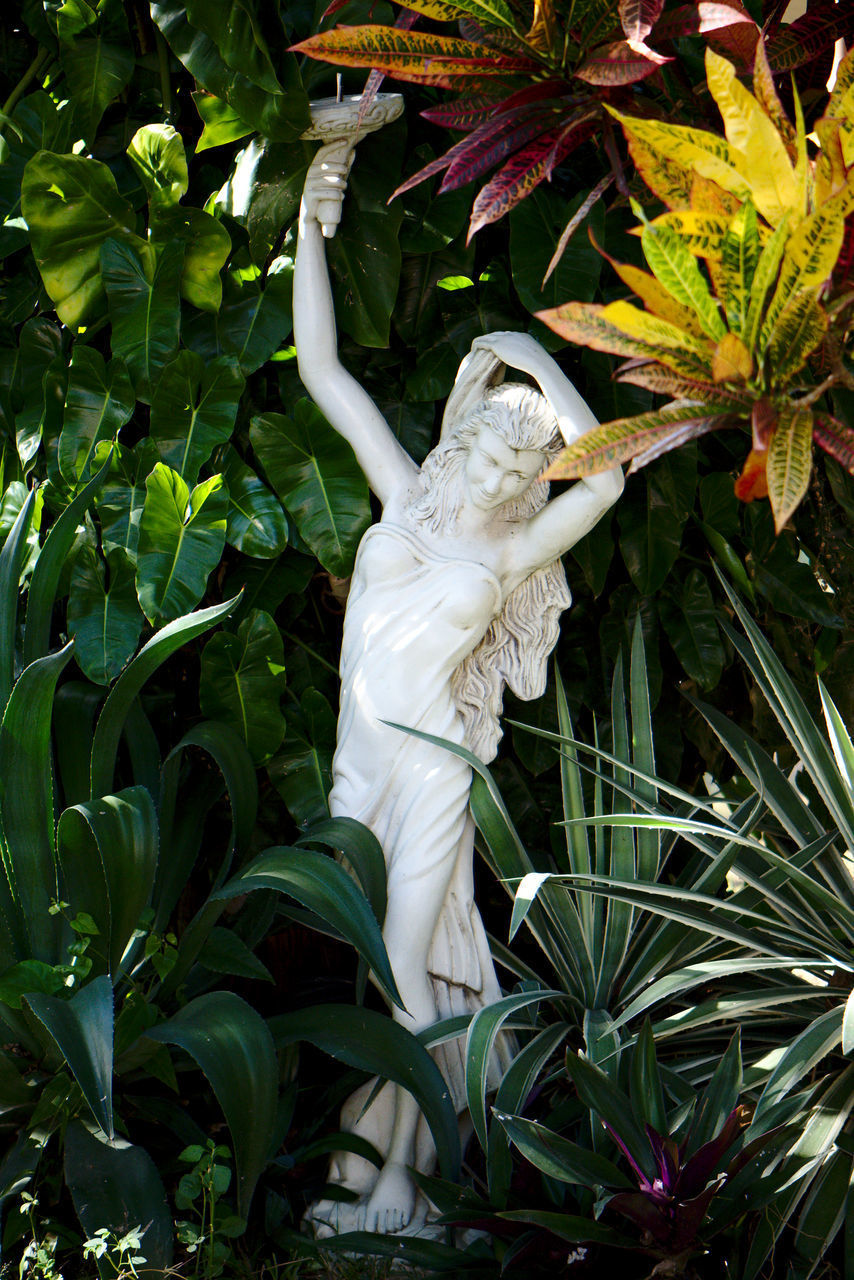 plant part, leaf, plant, growth, green color, sculpture, nature, representation, no people, day, art and craft, human representation, statue, one animal, tree, white color, outdoors, animal wildlife