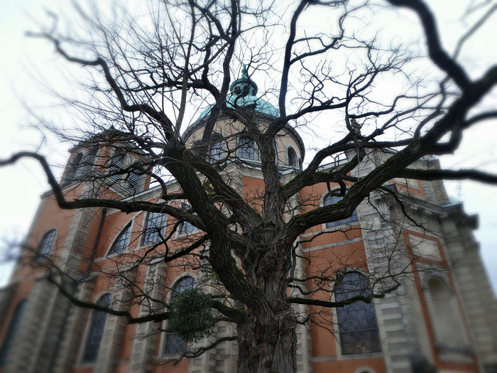 italian builder🙄 Love Domes So Much Beauty On My Doorstep Eyem Best Shots Beauty On A Grey Day For My Friends😚 Love My Home Town Beautiful Churches Through Bare Trees Shades Of Winter
