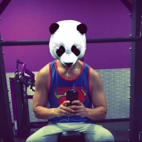 Gym Chestday Panda Superman Selfie