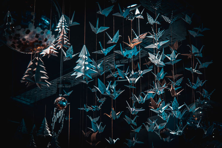 Lots of origami swans hanging from the roof, seen from underneath in a softly illuminated room