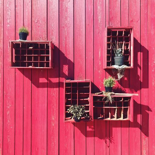 Plant boxes Pot Plants Plant Feature Wooden Feature Boxes Plant Pots Architecture Built Structure Building Exterior Window Day No People Wall - Building Feature Shadow Sunlight