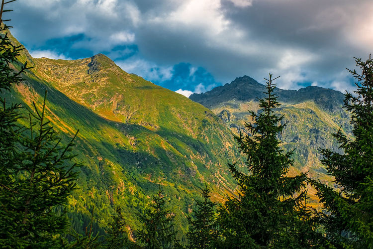 Mountain green peaks Autumn Beauty In Nature Cloud - Sky Coniferous Tree Day Environment Green Color Green Peak Land Landscape Mountain Mountain Peak Mountain Range Nature No People Non-urban Scene Outdoors Pine Tree Pine Woodland Plant Scenics - Nature Sky Tranquil Scene Tranquility Tree The Great Outdoors - 2018 EyeEm Awards
