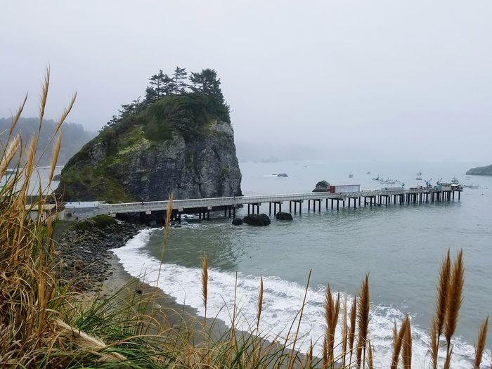 Trinidad California Usa Horbour View Ocean View Pasific Ocean Bay Ocean Rocks Harbored, Boats, Redwood Coast