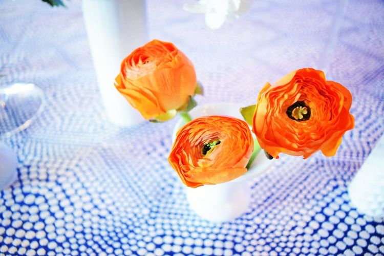 Close-up Flower No People Freshness Indoors  Day Flowers Ranunculus Centerpiece Budvase