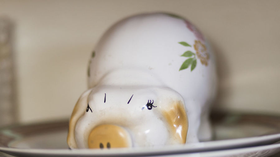 Close Up Of Piggy Bank In Plate