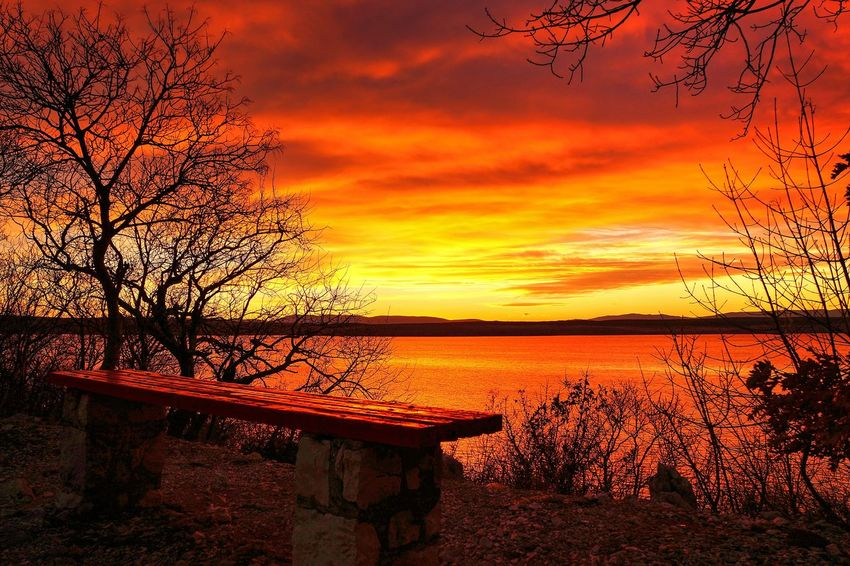 Sunset Bench Crikvenica Bare Tree Beauty In Nature Cloud - Sky Lake Nature Nautical Vessel No People Orange Color Outdoors Scenics Silhouette Sky Sunset Tranquil Scene Tranquility Tree Water