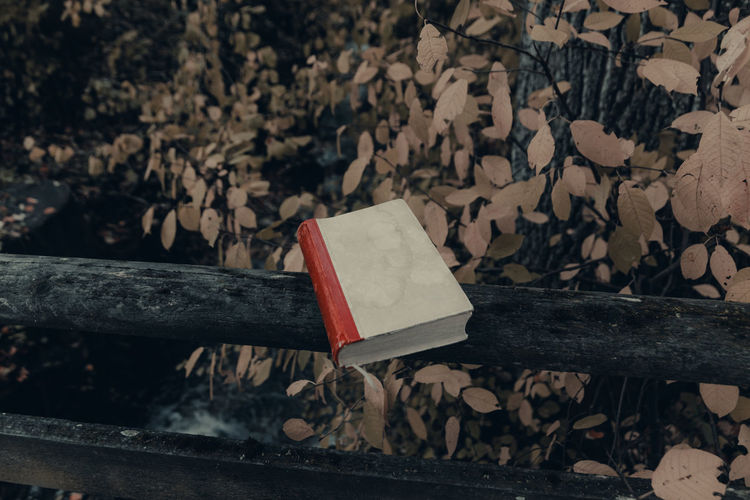 Close-up of open book on wooden table
