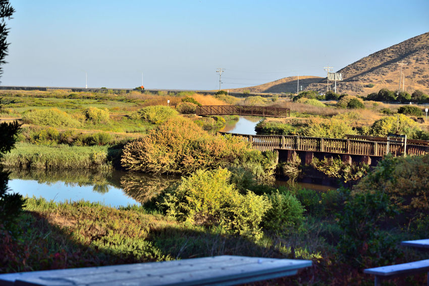 Newark Slough Trail 5 Tidal Wetlands Marsh Canals Newark Slough Trail Tidelands Trail Streams Channels Footbridges Overpass Reflection Reflections In The Water Irrigation Restored Marshlands Landscape Don Edwards National Wildlife Refuge Nature Nature_collection Beauty In Nature Levees Dikes Western Coyote Hills Watershed Eastbay Hills Landscape_Collection Landscape_photography Southern San Francisco Bay Wetland