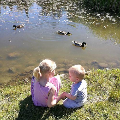 Sitting Childhood Outdoors Child Togetherness Ringve Botaniske Hage Norway🇳🇴 Trondheim Lade