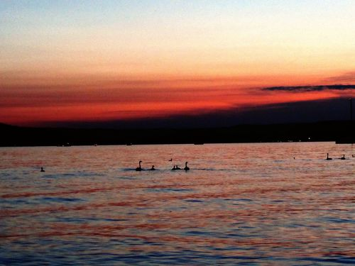 Lake Superior Lake Sunset Sunset Nature Beauty In Nature Water Animals In The Wild Scenics Tranquility Swimming Wave Sky