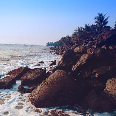 Water. Rocks. Coconut tree. 😍