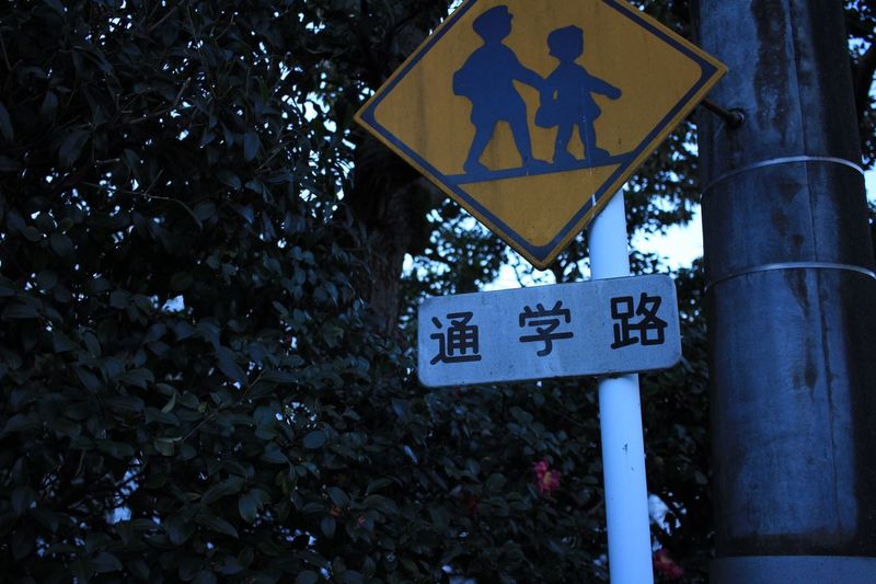 Japan Tokyo Tokyo,Japan Japan Photography Tsugakuro Street Trees Green Japaneselike Sign Road Sign Art Is Everywhere