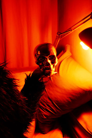 Indoors  Red Color Red Light Dark Sinister Close-up Human Skull Spooky Home Interior Skeleton Human Body Part Human Skeleton Skull Gloomy Twin Peaks Interior Curtain Faux Fur Ominous Illuminated Light Light And Shadow